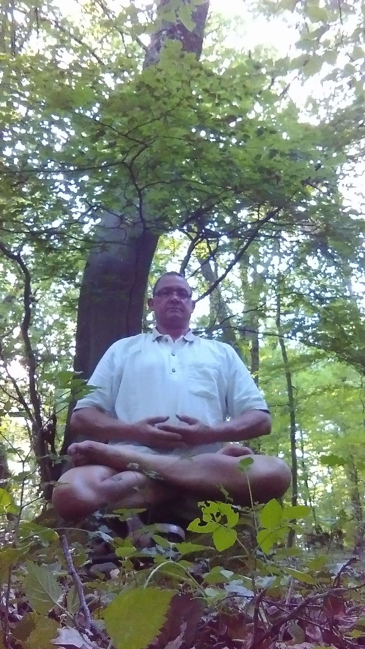 Bos meditatie.jpg